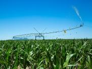 corner-tl-pivot-irrigation