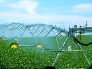 tl-center-pivot-irrigating
