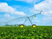 tl-center-pivot-irrigation