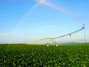 wide-pivot-rainbow
